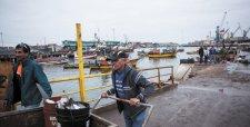 Recursos pesqueros en el norte caen a menor nivel en 20 años por fenómeno de El Niño