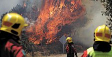 Siguen las malas noticias: declaran Alerta Roja para Valdivia por incendio forestal