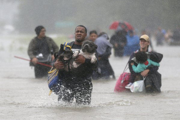 Una persona lleva a su perro a través de las aguas de la tormenta tropical Harvey en Beaumont Place, Houston, Texas - REUTERS