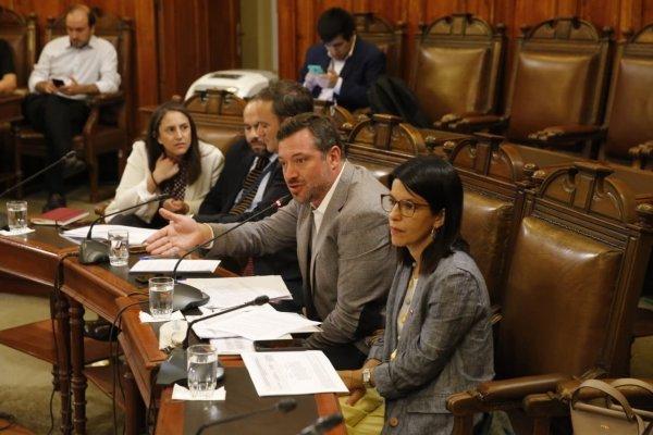 Luego de la comisión mixta, a la que asistió la subsecretaria de Desarrollo Social, Alejandra Candia, ahora el proyecto lo verán las salas de la Cámara y el Senado.